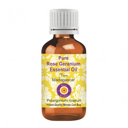 Pure Rose Geranium Essential Oil
